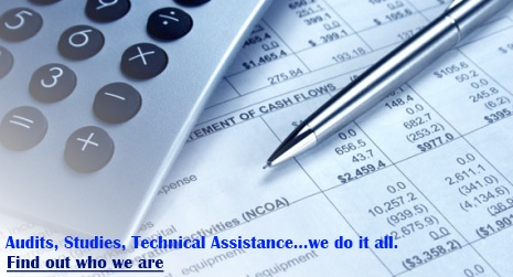 APA Annual Report